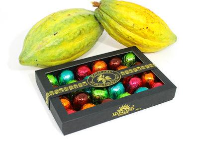 tropical fruits mayaland 24