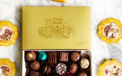 Vacaciones con Chocolates!