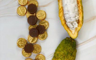 Monedas de Chocolate con Leche 41% cacao